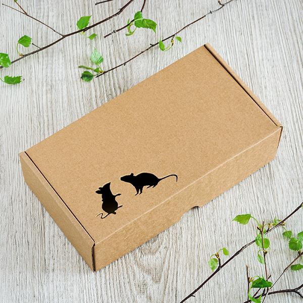 Dāvanu kaste ar divām lāzergrieztām pelēm kreisajā stūrī