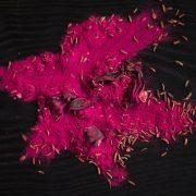 Manas Garšas, garšu buķete lillā smēriņam