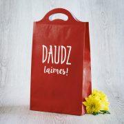 Dāvanu maisiņš, 210x375x100mm, Daudz laimes