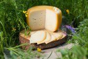 Ievas siers, klasiskais, 0,5kg