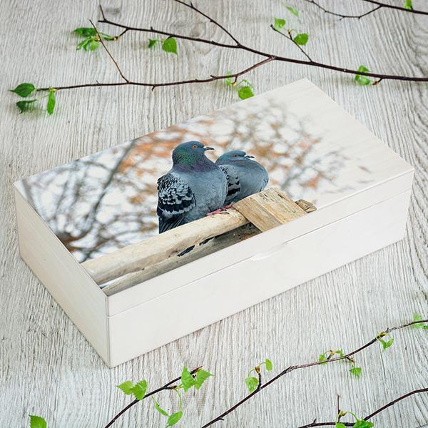Balta koka kaste ar 2 rindām un katrārindā pa 4 nodalījumiem ar baložu foto