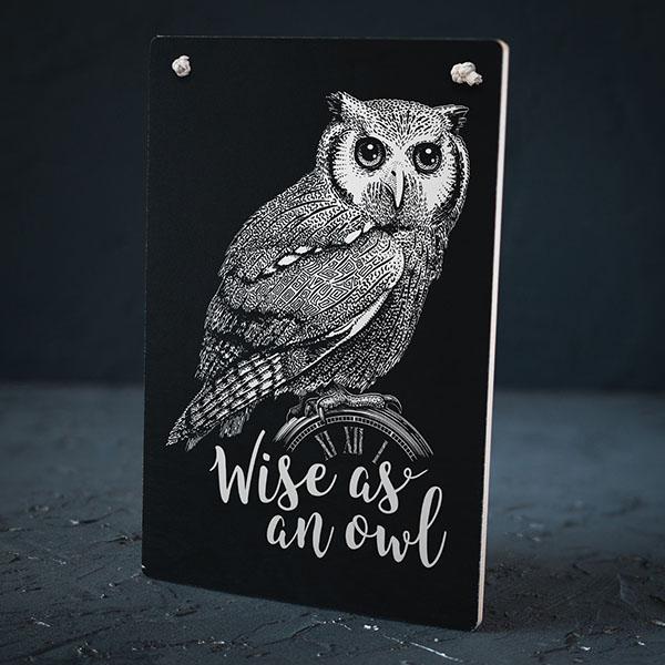 """Melns dekoratīvais koka dēlītis ar baltu pūces zīmējumu un tekstu: """"Wise as an owl"""""""