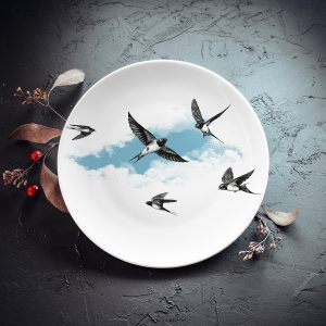 dadzis šķīvis ar bezdelīgām
